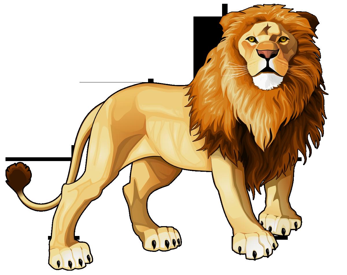 Clipart lion asiatic lion. Frames illustrations hd images