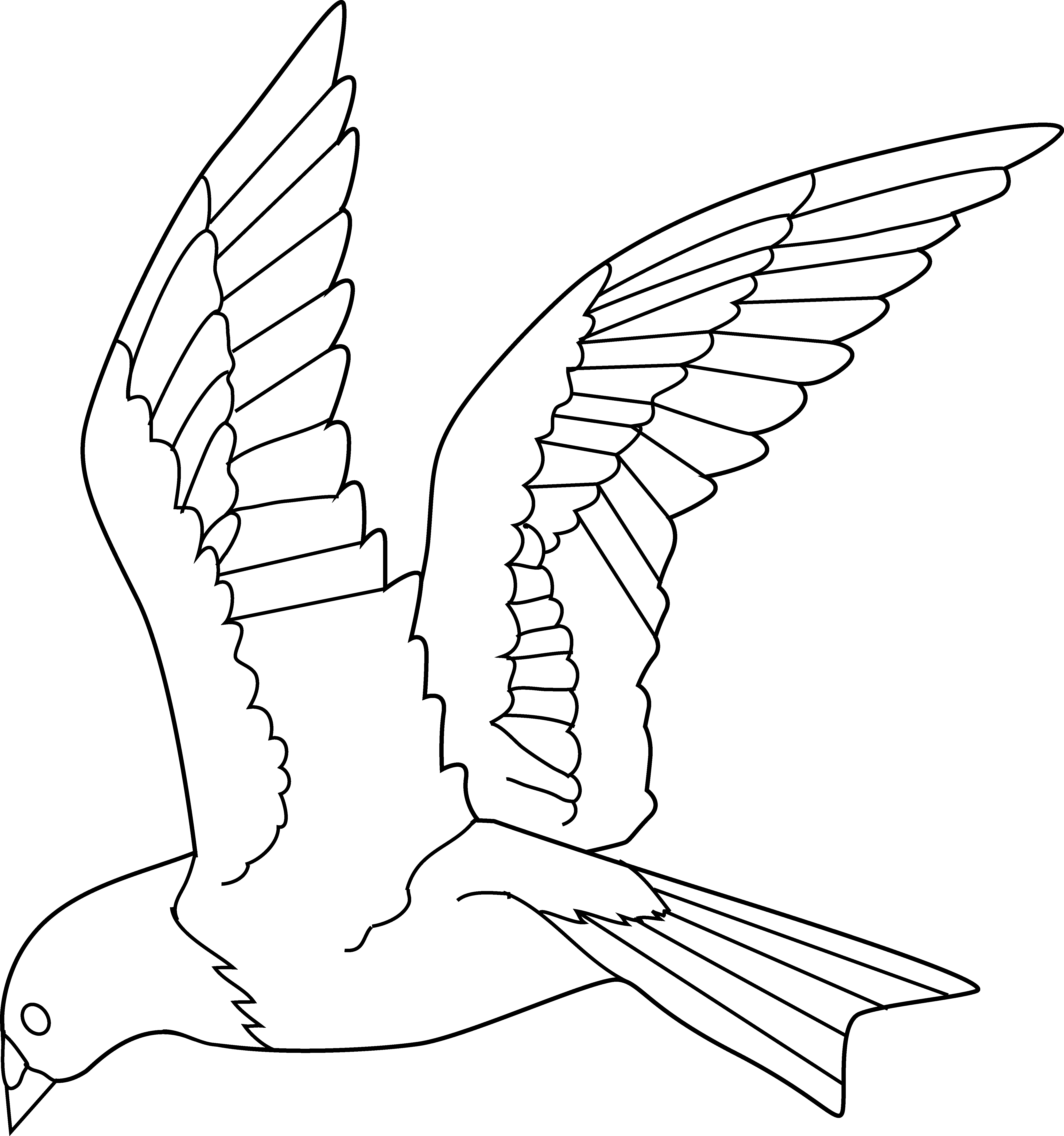 Fast clipart thrust. Flying bird coloring page