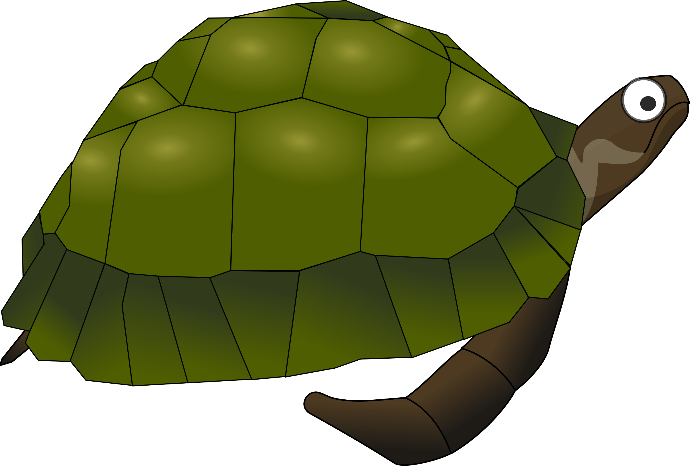 Clipart turtle pond turtle. Green cartoon big image