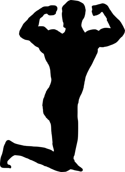 Bodybuilder silhouette png free. Clipart man muscle