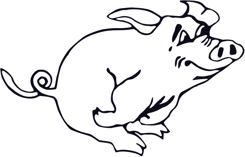 Animal pictures royalty free. Pig clipart line art