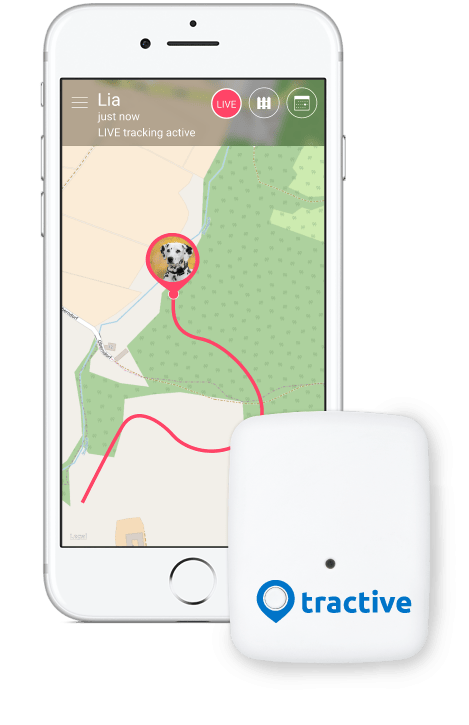 Tractive gps tracker for. Clipart phone shopping