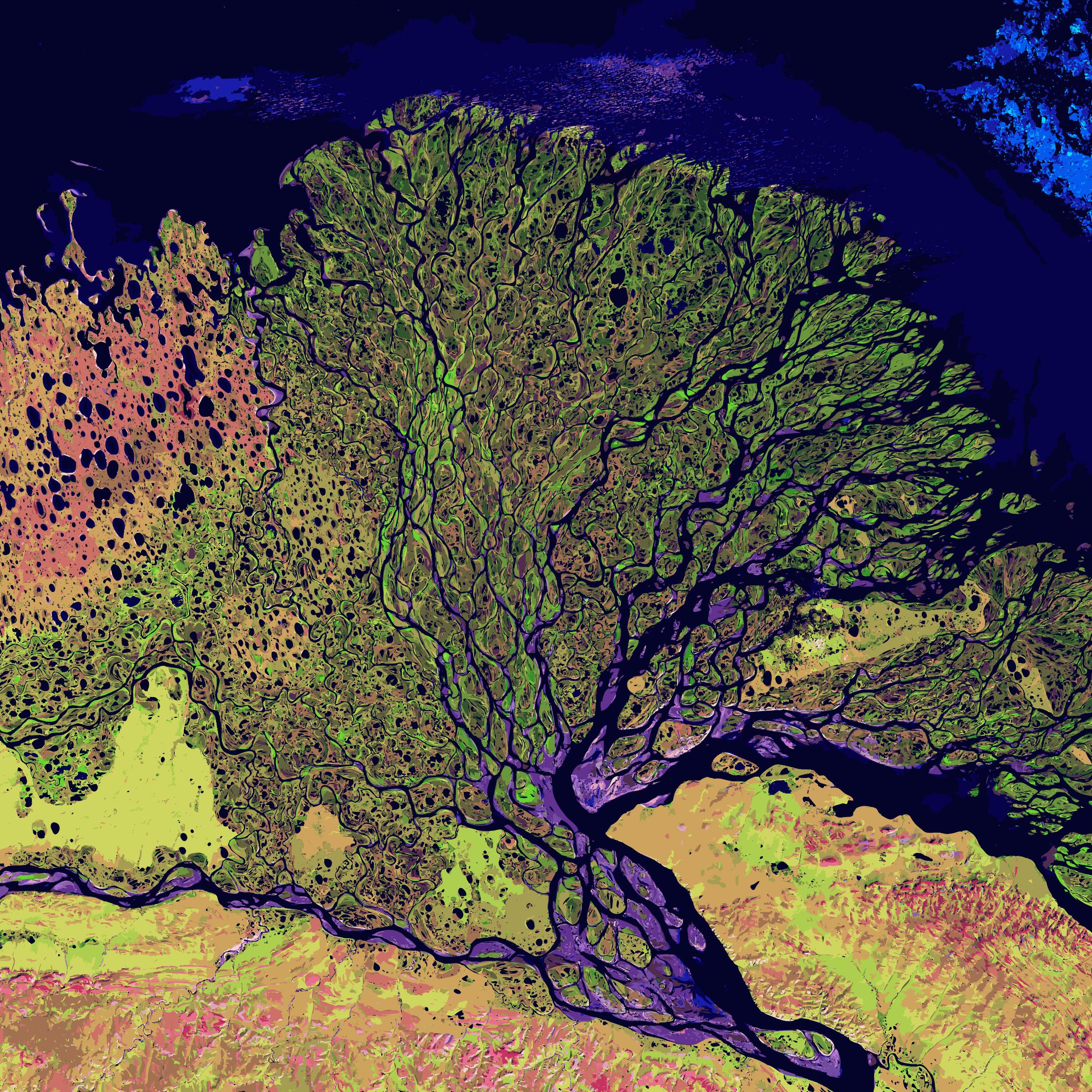 Lena landsat big image. Map clipart river delta