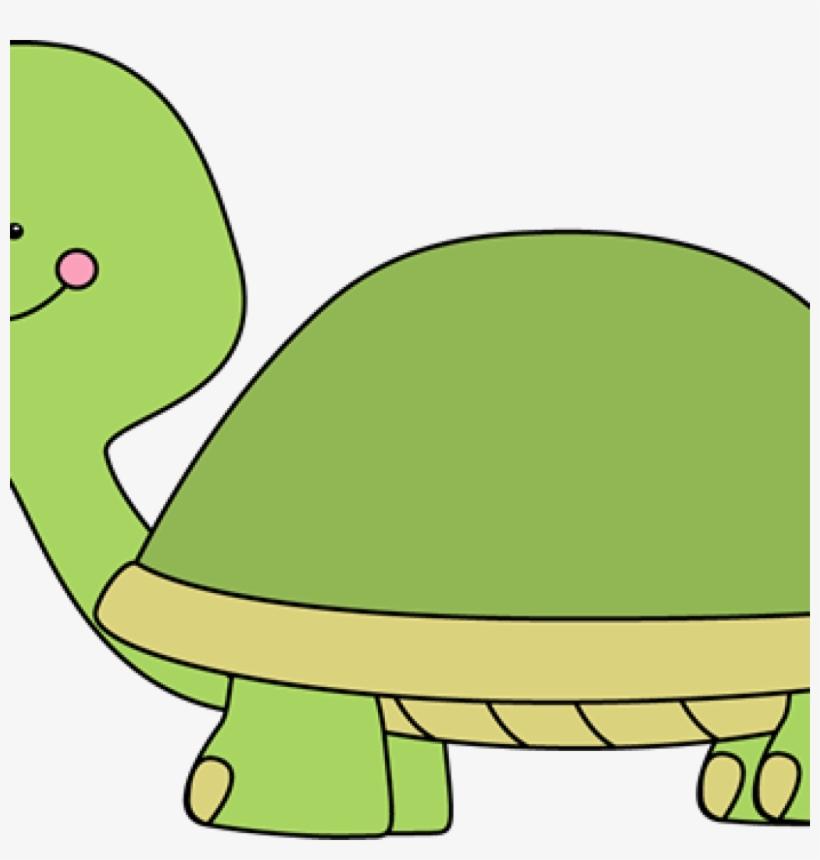 Clipart turtle math. Cute clip art images
