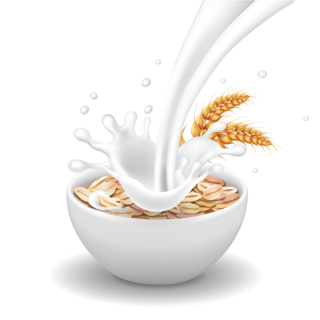 Wheat clipart vector. Breakfast with realistic milk