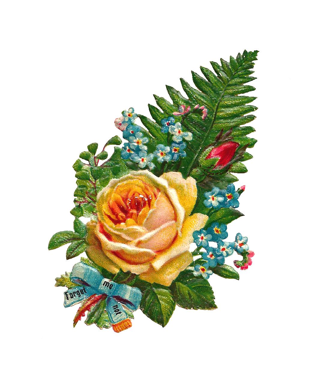 Antique images clip art. Clipart rose bucket