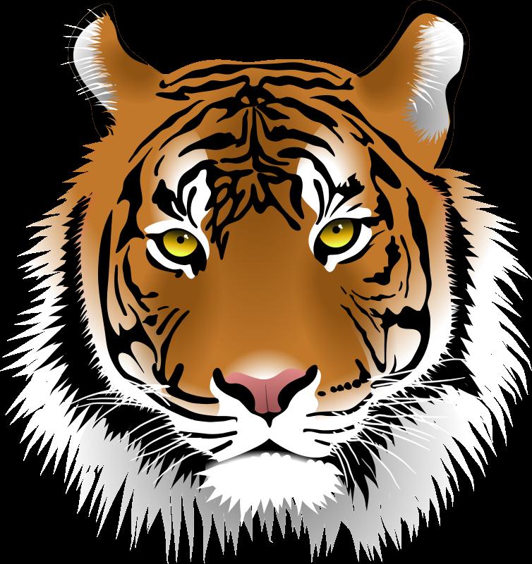 Home ken swiech rockdale. Student clipart tiger