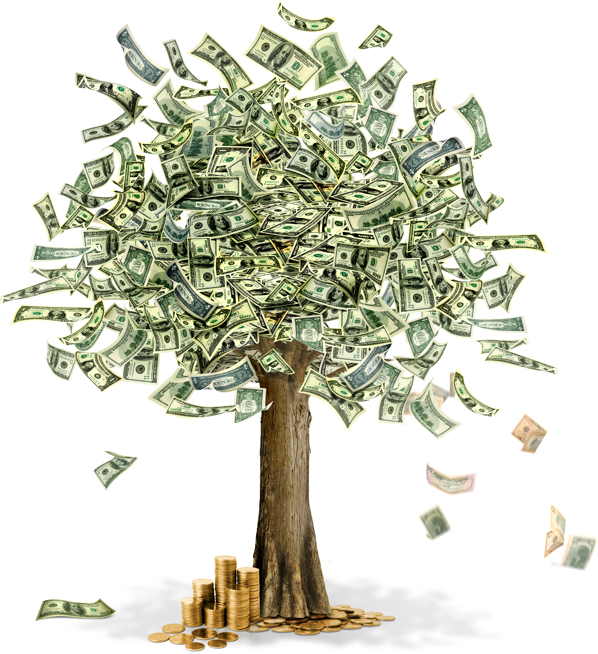 Drawing at getdrawings com. Money tree png