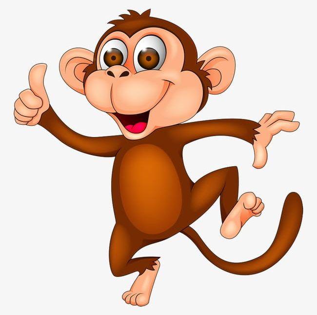 Clipart monkey animal. Cartoon png animals