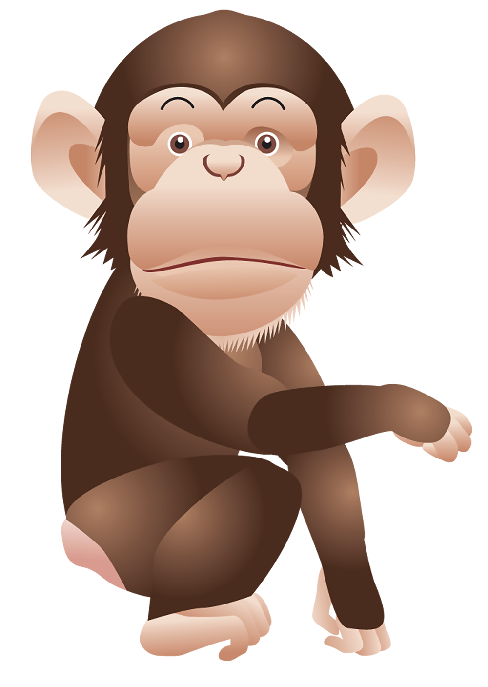 Monkey png animal pinterest. Monkeys clipart chimpanzee