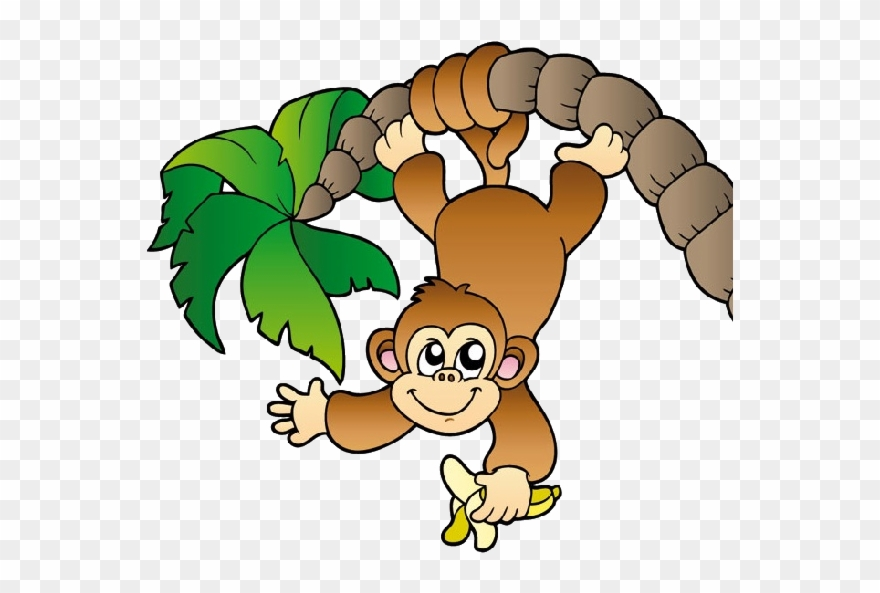 Clipart monkey cheeky monkey. Jungle hanging from a