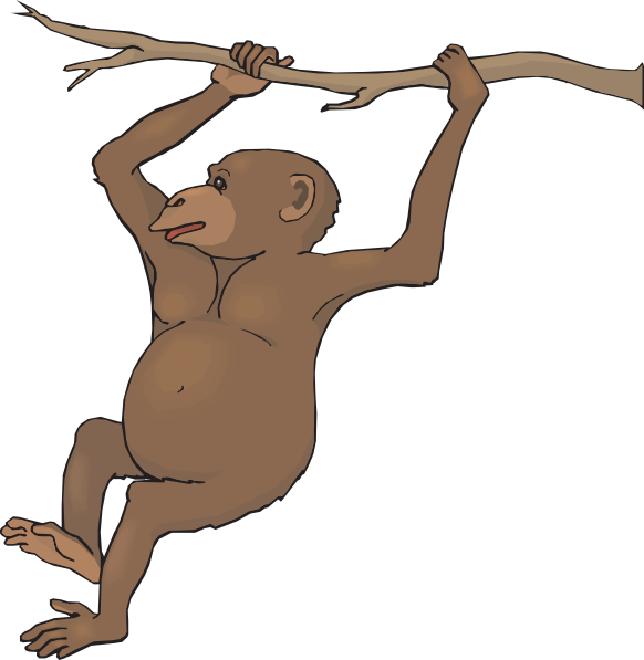 Swinging chimp clip art. Monkeys clipart chimpanzee