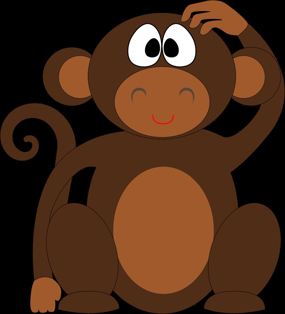 Monkeys clipart curiosity. And questions a formula