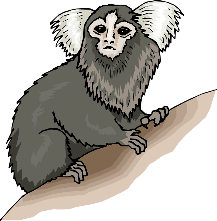 Free. Monkey clipart pencil