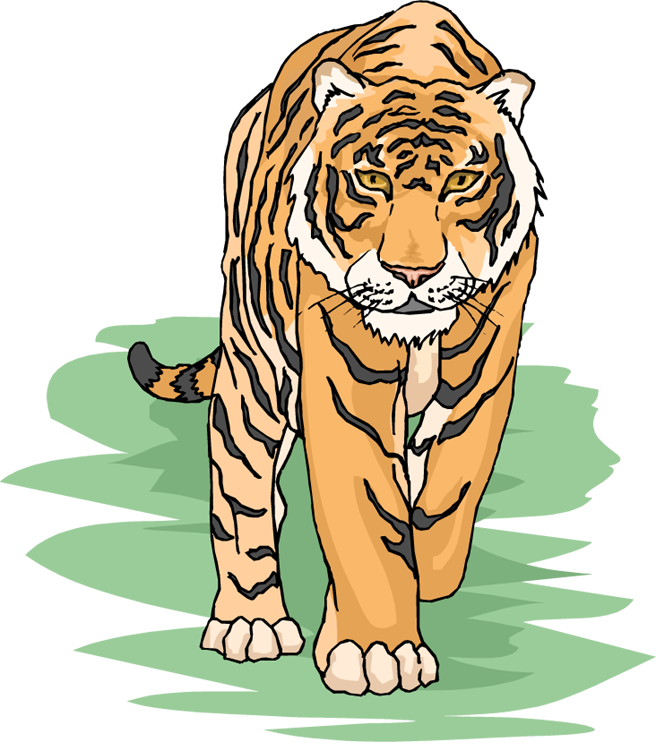 Student clipart tiger. Free
