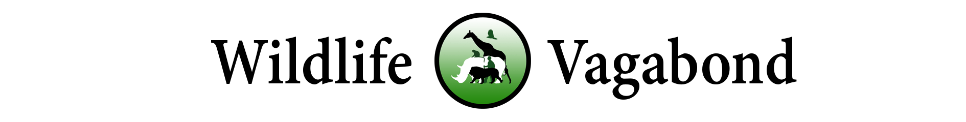 Wildlife vagabond logo . Clipart monkey vervet monkey