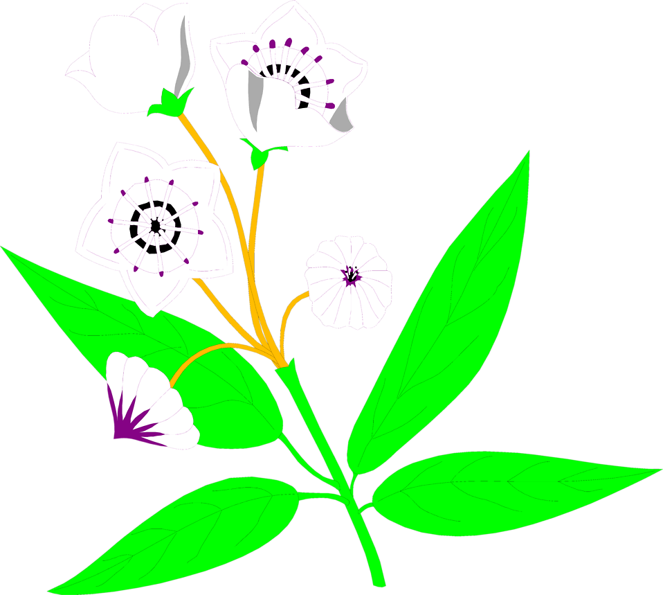 Clipart mountain flower.  collection of laurel