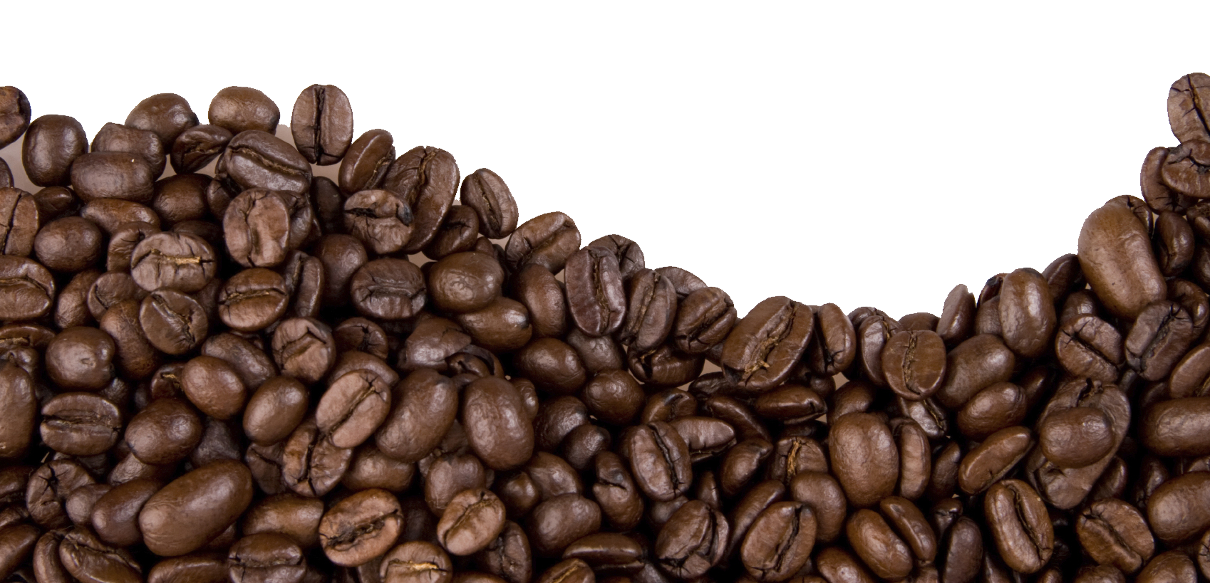 Clipart mountain ground. Coffee plant grounds pencil