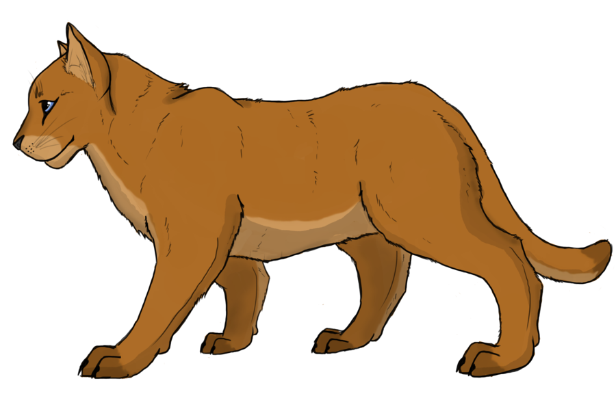 Lion at getdrawings com. Clipart mountain line drawing