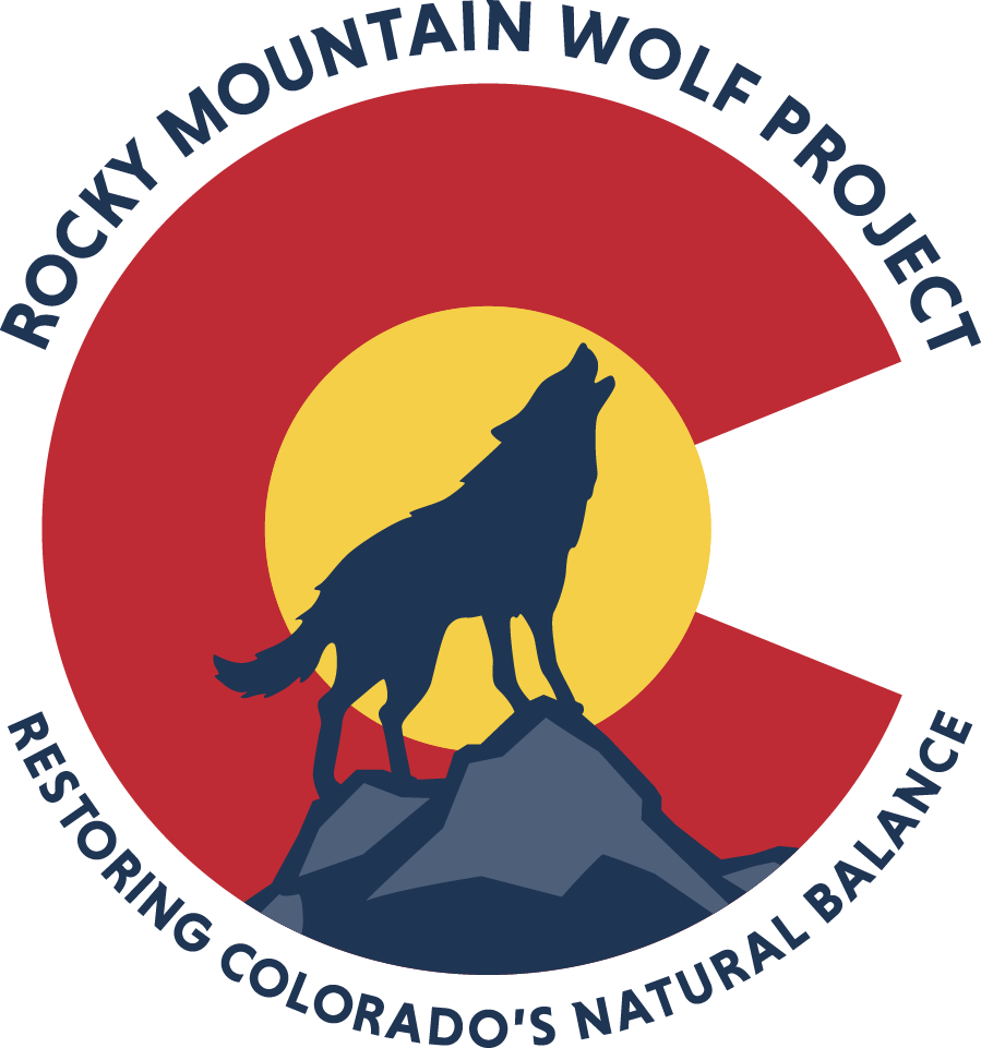 Wolves clipart mountain. Rocky wolf project tedxboulder