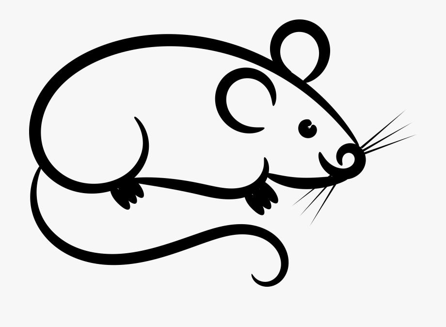 Rat white clip art. Mouse clipart