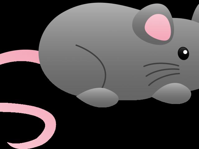 Mice clipart kid. Animals animal cliparts free