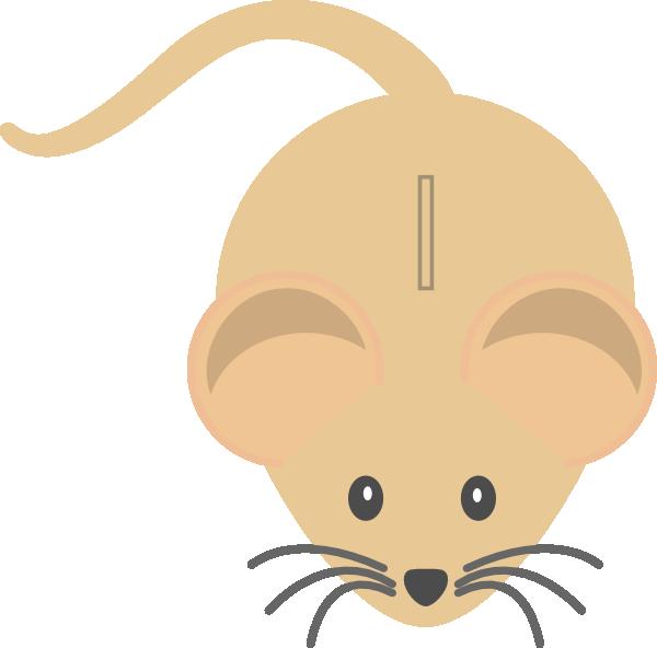 Mice colour