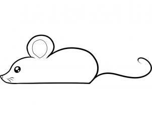 Mice clipart sketch. Realistic mouse drawing panda
