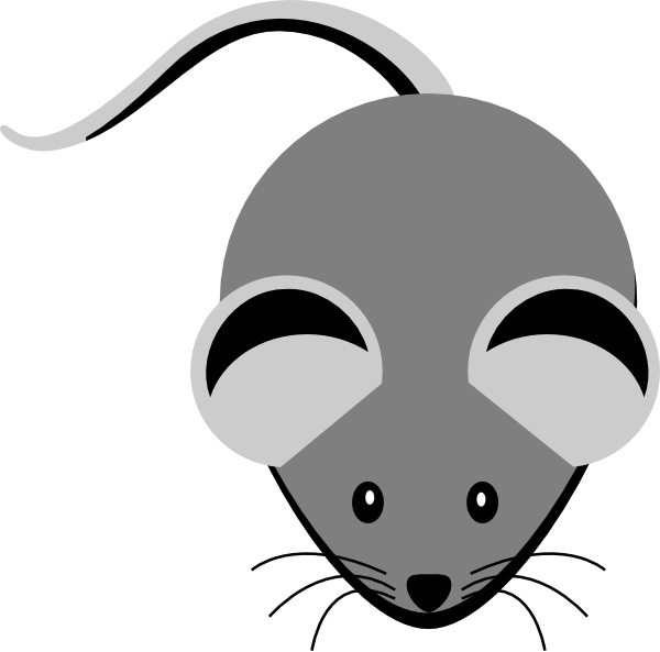 Clipart mouse lab mouse. Grey clip art at