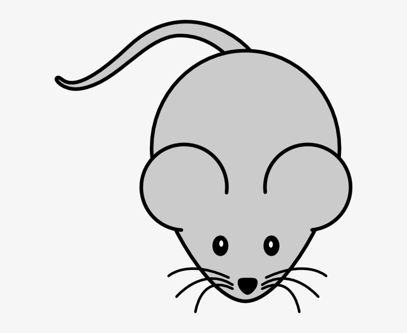 How to set use. Clipart mouse laboratory