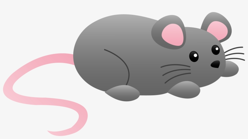 Mouse clipart mouse tail. Rat cartoon muridae clip