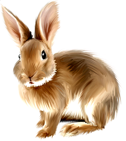 Wolf clipart rabbit. Pin by kasia on