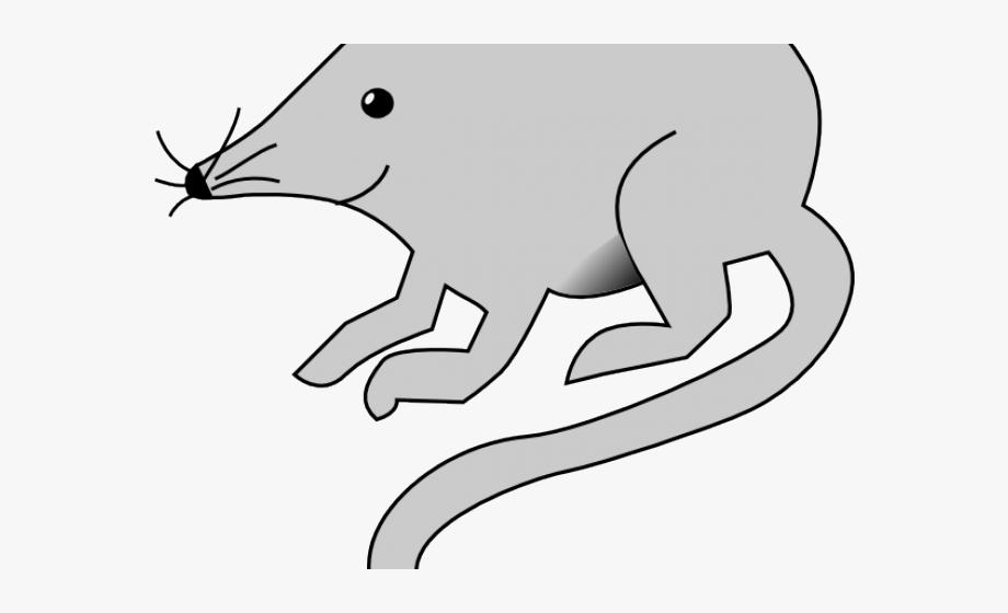 White clip art free. Clipart mouse rat