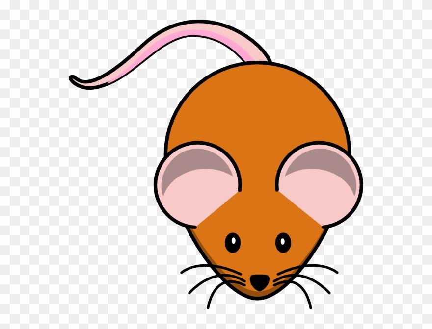 Mouse lab rat clip. Mice clipart research