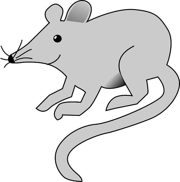 Free cartoon download clip. Clipart mouse sketch