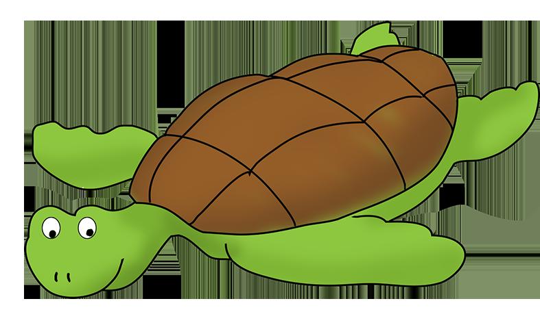 Pirate clip art cartoon. Clipart turtle couple