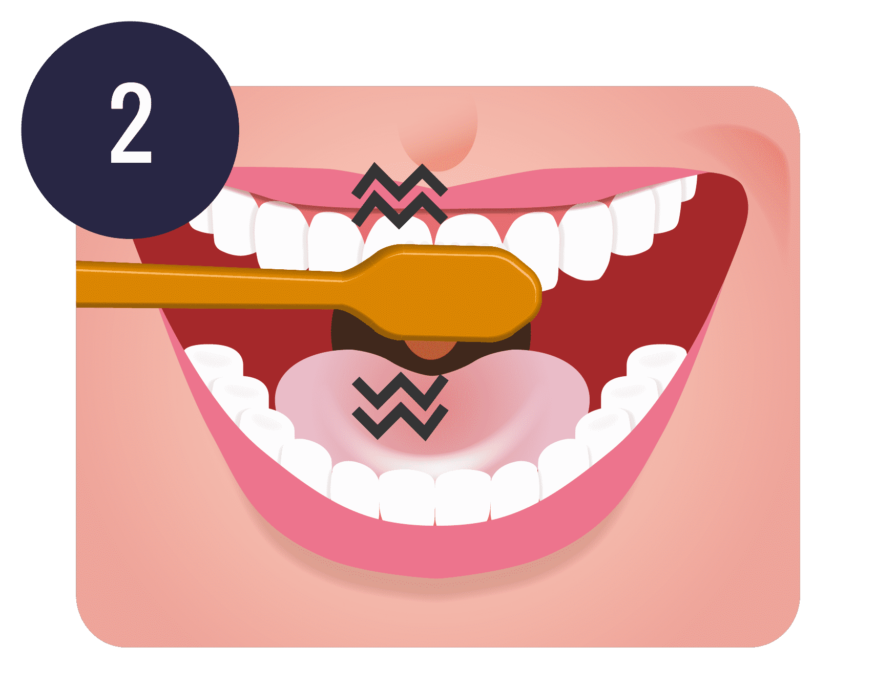 Tooth brushing teeth cleaning. Dentist clipart brushteeth