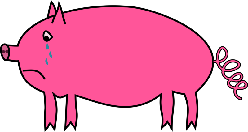 Clipart pig beach. New free images photos