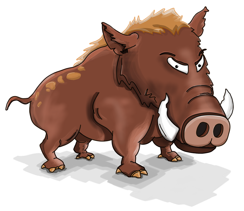 Pigs clipart baboy. Wild pig vector graphics
