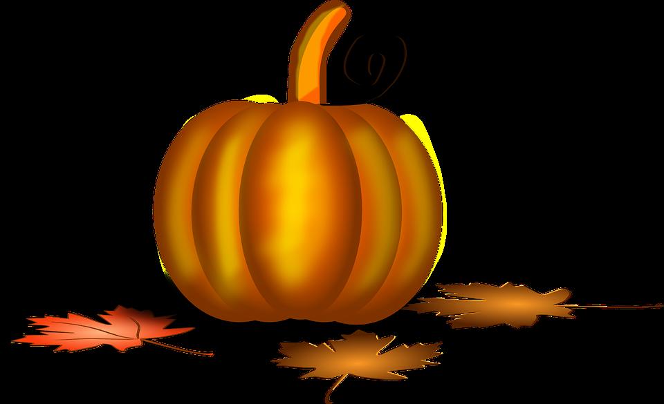 Clipart pumpkin stem. Animated transparent clipground free