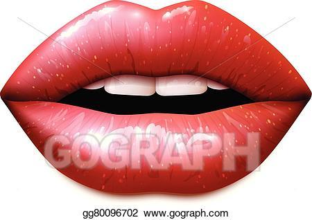 Vector art realistic drawing. Lips clipart female lip