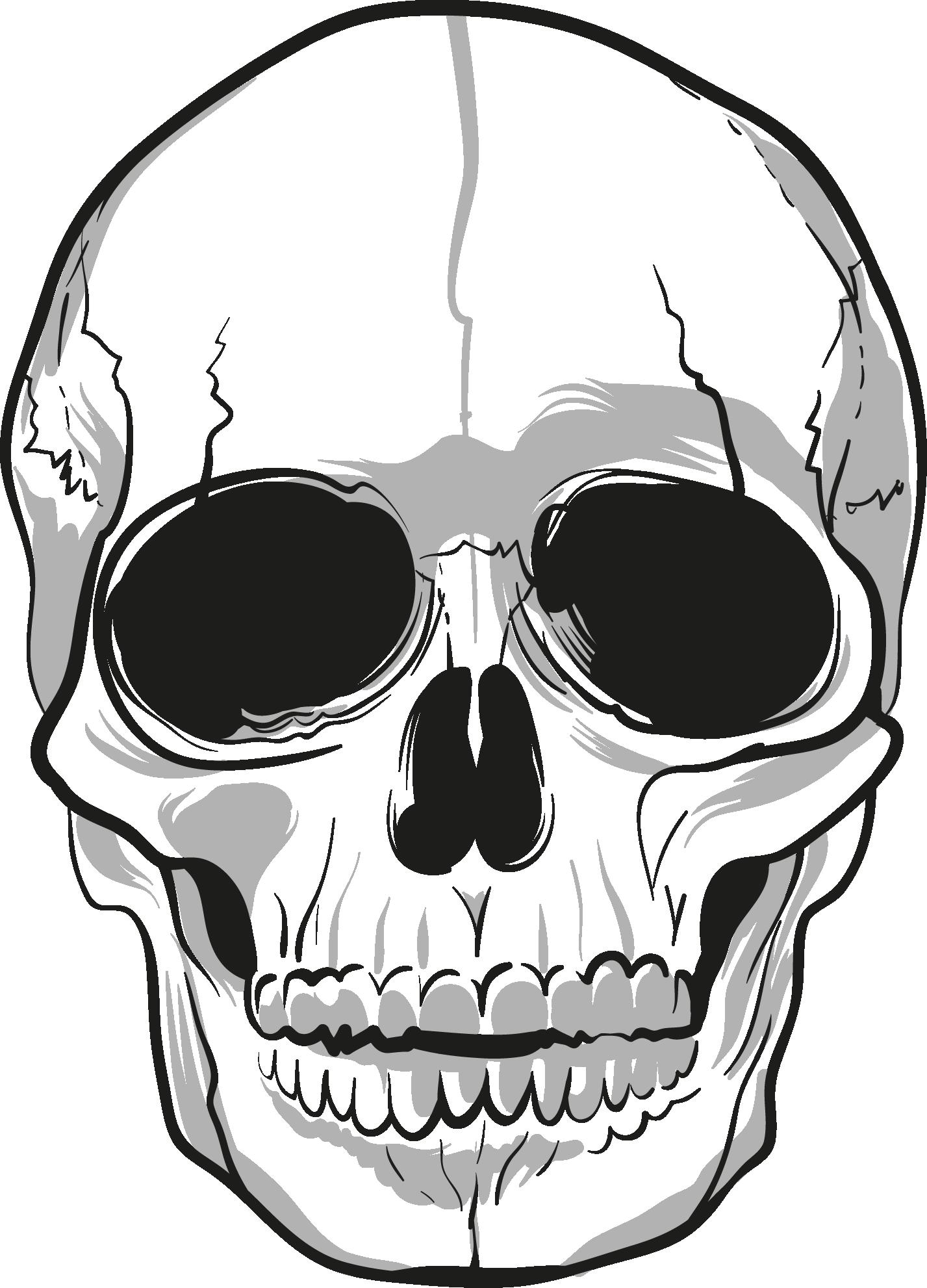 Skulls png image purepng. Clipart skeleton line art