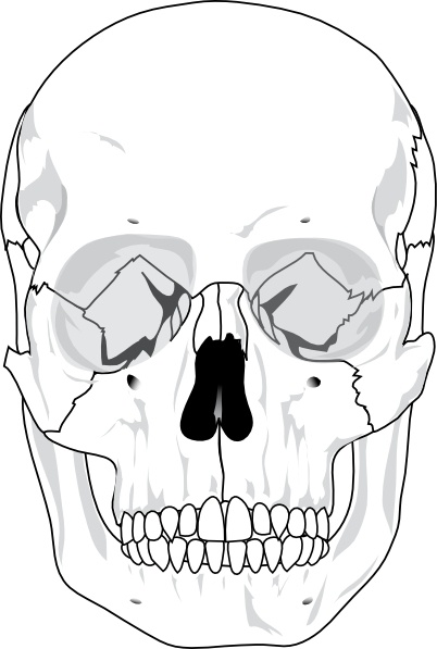 Human clip art free. Clipart mouth skull