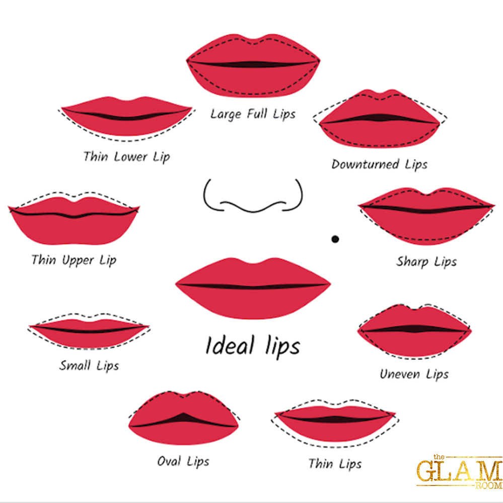Lips Clipart Lip Shape  Lips Lip Shape Transparent Free