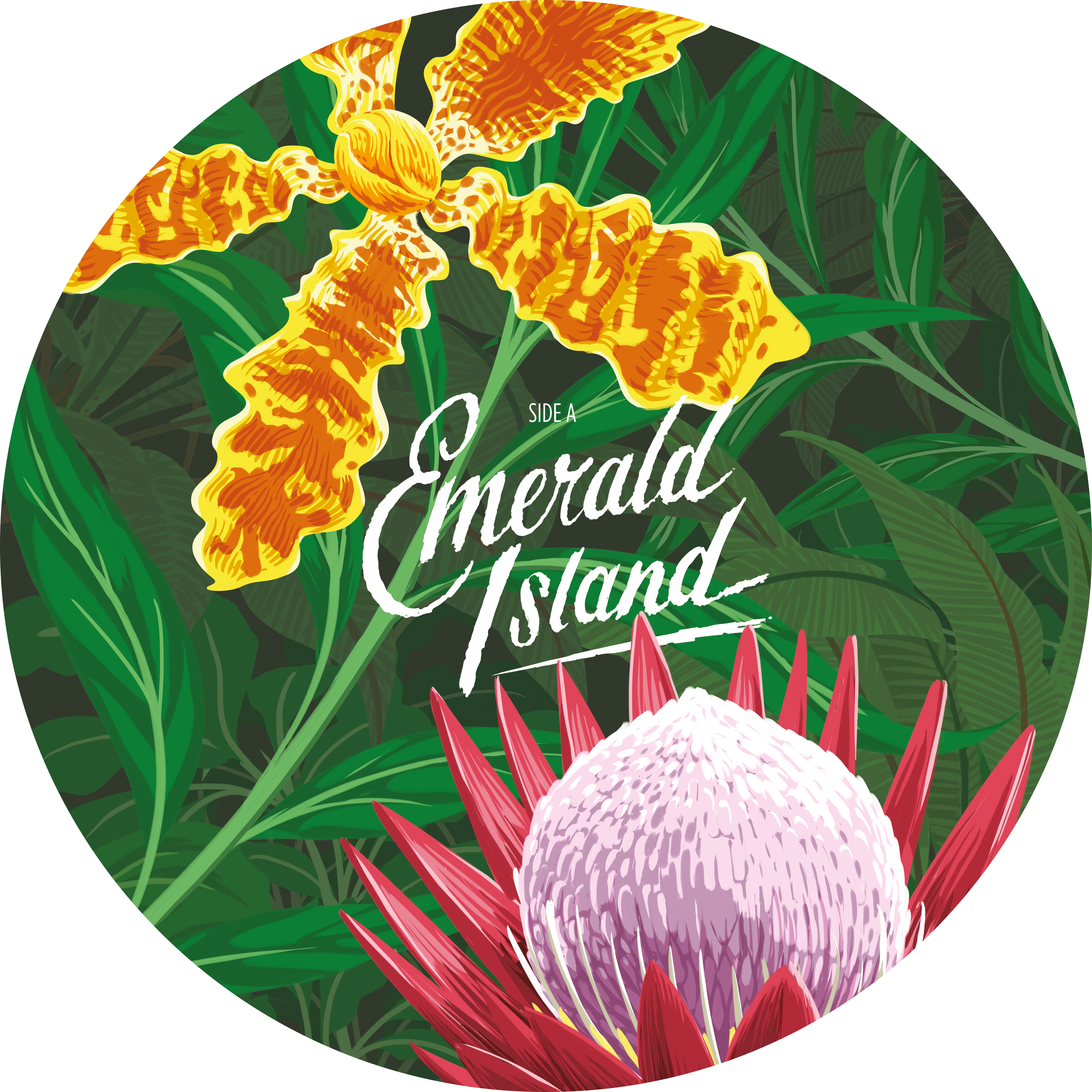 Caro emerald island ep. Clipart music music room