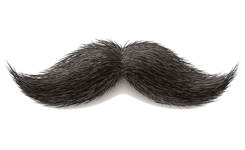 Clipart mustache invisible background. Beard transparent beauty within