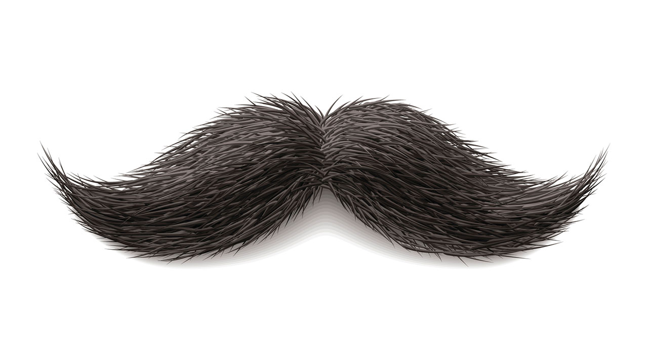 Clipart mustache realistic. Free png download clip