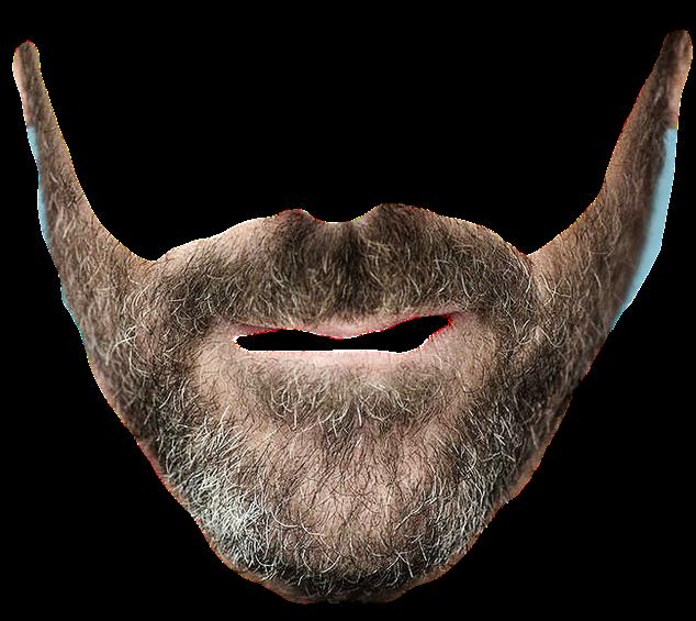 Mustache transparent realistic png. Moustache clipart shape