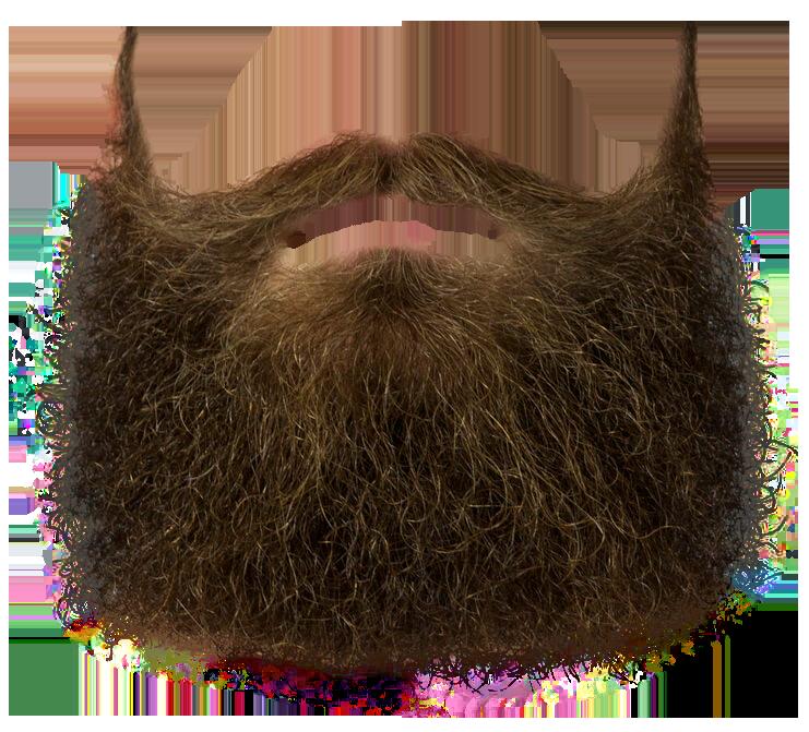 Mustache transparent realistic png. Moustache clipart chasma