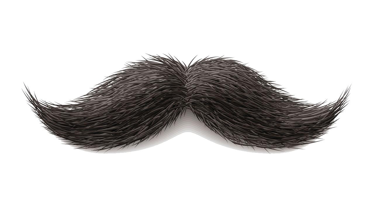 Clipart mustache stache.  real png places